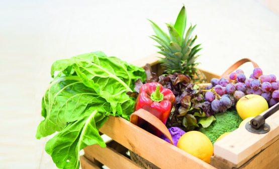blog-alimentacion-ecologica