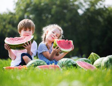 Fruta de temporada ecológica