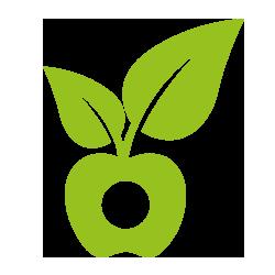 manzana supermercado ecológico