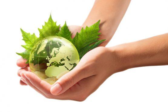 Salva el planeta